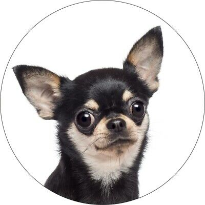 £2.99 • Buy Two Chihuahua Black Dog Printed Vinyl Decal Stickers For Laptop Cars And Fridges
