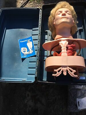 Laerdal Resusci Anatomic Anne,Health Care,Medical Training Manikin,Resuscitation • 68.74£