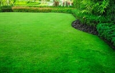 £5.99 • Buy Quik Lawn GRASS SEED, Quick Growing Lawn Seed With Organic Fertiliser Mix Lush