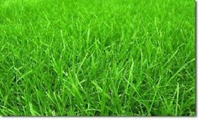 £2.99 • Buy Quick Growing Premier Lawn GRASS SEED,  Lawn Seed With Organic Fertiliser Mix