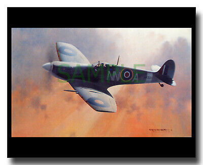 £8 • Buy RAF Spitfire Mk V 310 Squadron Czech Clipped Wing Picture Charles Thompson