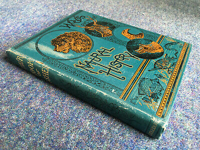 £49.99 • Buy Picture Book Of Fishes, Insects Etc. JG Wood Routledge C.1890 Natural History