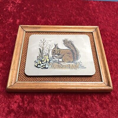 £4.99 • Buy Titanium Etched Red Squirrel Picture With Frame