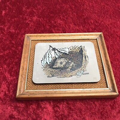 £4.99 • Buy Titanium Etched Hedgehog Picture With Frame