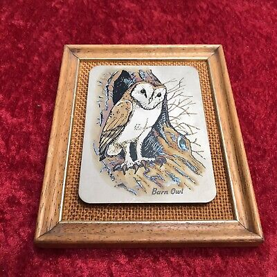 £4.99 • Buy Titanium Etched Barn Owl Picture With Frame