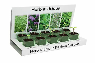 £10.99 • Buy Herbs-a-licious Grow Your Own Kit 5 Varieties To Grow From Seed, Eco Friendly