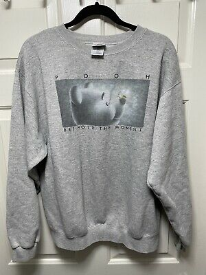 £7.16 • Buy Winnie The Pooh Sweatshirt Bee Hold The Moment Mens Large Disney Store Gray
