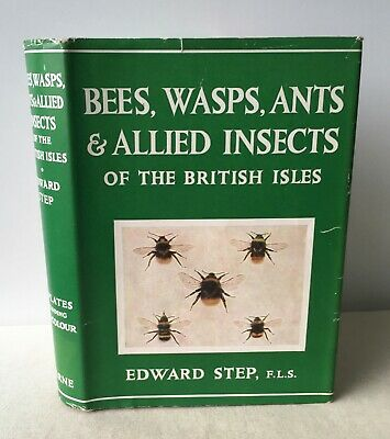 £20 • Buy Edward Step - Bees Wasps Ants & Allied Insects British Isles - Wayside Woodland