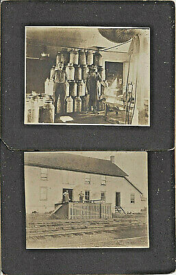$9.99 • Buy 2 Cabinet Photos-dairy Workers Receiving Farm Raw Milk Cans To Process