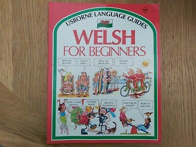 £1.50 • Buy Usborne Language Guides Welsh For Beginners