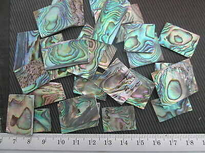 1oz Green Paua Abalone Shell Blanks,.060  Thickness.12-16 Inlay Material Pieces  • 21.82£
