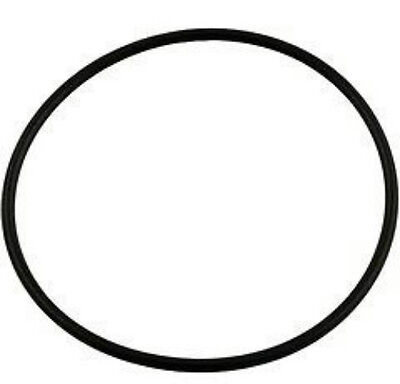 $7.72 • Buy Jacuzzi Magnum Swimming Pool Pump Lid Cover O-Ring Replacement O-336 47035803
