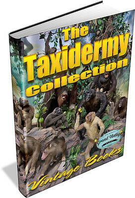 TAXIDERMY VINTAGE BOOKS ON DVD- Stuffing, Mounting Animals, Birds, Insects, Fish • 5.99£