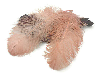 $61.90 • Buy 10 Wing 18- 24  Champagne Huge Ostrich Plumes Centerpiece Feathers Centerpiece