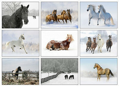 £6.99 • Buy Horse Christmas Cards - Pack Of Nine