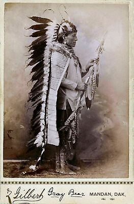 £3.99 • Buy Native American Indian Chief Gray Bear Portrait Photo Art Print Picture