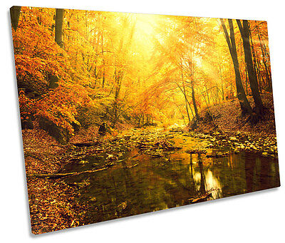 Sunset Forest River Landscape CANVAS WALL ART Picture Print Single • 23.99£