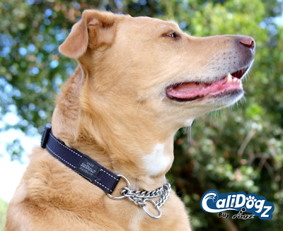 $15.95 • Buy Rogz Training Dog Collar Martingale Reflective M(12-17in) L(16-22in) XL(19-27in)