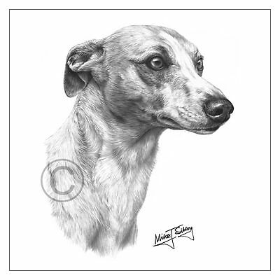 £3.50 • Buy New Mike Sibley Whippet Dog Breed Greeting Card Happy Birthday Thank You Mum Dad
