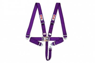AU199.99 • Buy  5 POINT HARNESS PURPLE ,clip In/outs NASCAR LATCH ,SPEEDWAY,RACECAR , SFI RATED