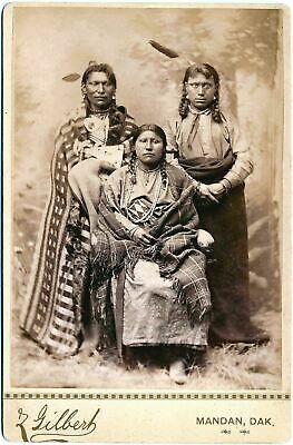 £3.99 • Buy Native American Indian Portrait Brave & Family 1880 Photo Art Print Picture