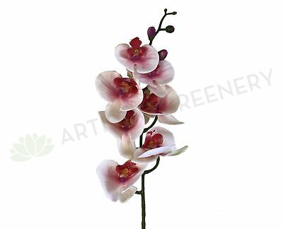 AU19 • Buy F0235 Phalaenopsis Orchid Light Pink 84cm Real Touch