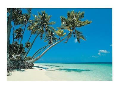Tropical Beach Backdrop Banner Party LUAU Photo Decoration (9 Ft. X 6 Ft.)  • 7.50£