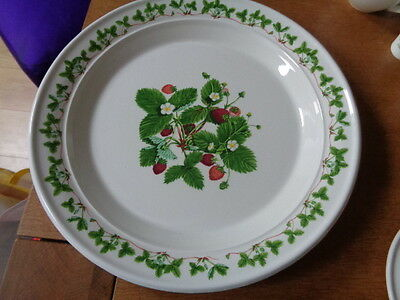 £20 • Buy Portmeirion Strawberry Large Round Serving Platter