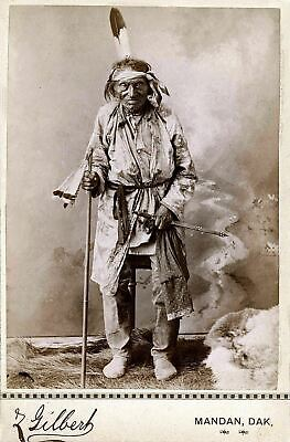£3.99 • Buy Native American Indian Portrait Big Hand Sioux 1880 Photo Art Print Picture
