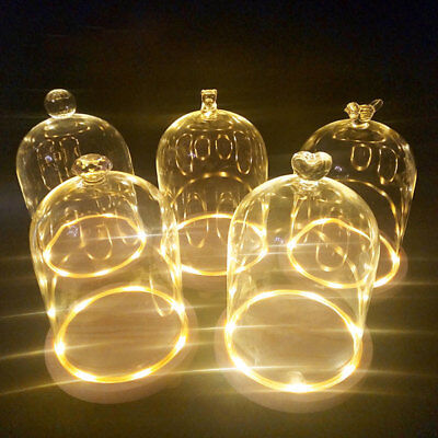 £14.34 • Buy Clear Glass Cloche Bell Jar Landscape Flower Cover Vase Display Dome With Lights