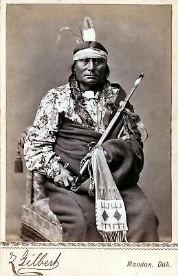 £3.99 • Buy Native American Indian Chief Gaul Portrait 1880 Photo Art Print Picture