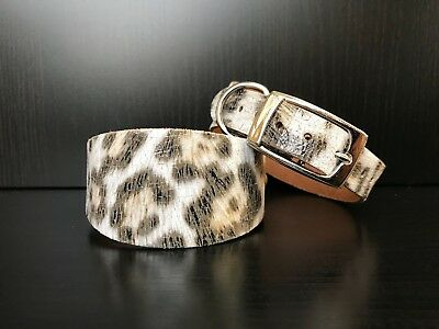 SMALL Leather Dog Collar Greyhound Whippet Saluki LEOPARD PRINT • 8.99£