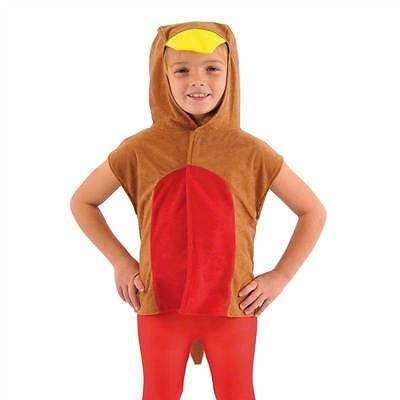 Robin Red Breast Bird Costume For Kids One Size, Fancy Dress, Charlie Crow • 12.50£