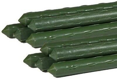 10 X 2.4m GREEN PLASTIC COATED STEEL PLANT SUPPORTS, RUNNER BEAN SUPPORTS • 30.99£