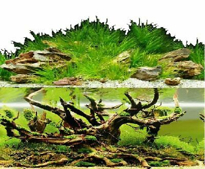 AU20.45 • Buy Aquarium Fish Tank Background Double Sided 24  / 60cm High - 2 To 10 FT Lengths