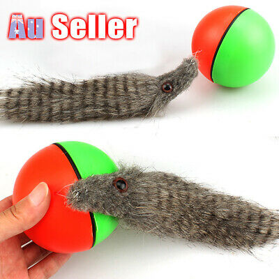 AU13.65 • Buy Pet Toy Rolling Ball Weasel Dog/Cat Moving Appears 8x21cm Funny Motorized New!