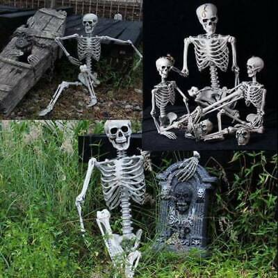 $9.27 • Buy New Poseable Full Life Size Party Prop Decoration Human Skeleton Halloween 40cm
