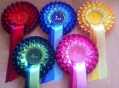 £4.99 • Buy 3 Tier Rosettes 1st - 5th Dog, Horse, Animal Show Safety Pin