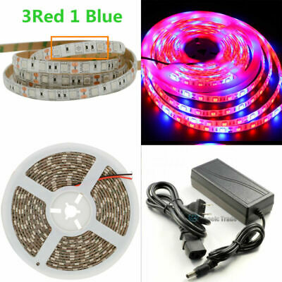$21.56 • Buy Waterproof SMD 5050 LED Strip Grow Light Lamp Full Spectrum With Power For Plant