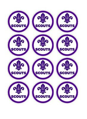 12 Scouts Party Stickers • 1.50£