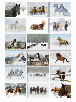 £11.99 • Buy Horse Christmas Cards - Pack Of 18