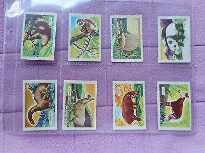 Trade Issue - Kelloggs - Full Set 15 Cards - Strange Animals  • 9.99£