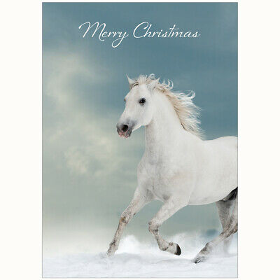 £15.99 • Buy Personalised Equestrian Christmas Cards - Pack Of 20 - One Design
