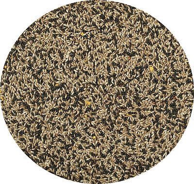 Canary Seed Mixed 1kg Bow Brand Great Seed Mixed Seed Food Feed For Canaries • 4.75£