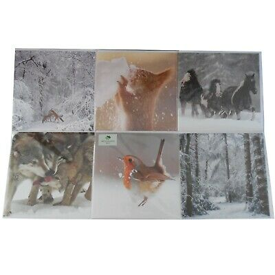 £2.85 • Buy Scenic Woodland And Animal Gretting Card Christmas Cards, Wildlife, Nature Xmas