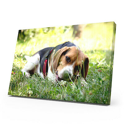 Your Personalised Photo On A4 Ready To Hang Canvas Print - Framed Large Box • 6.99£