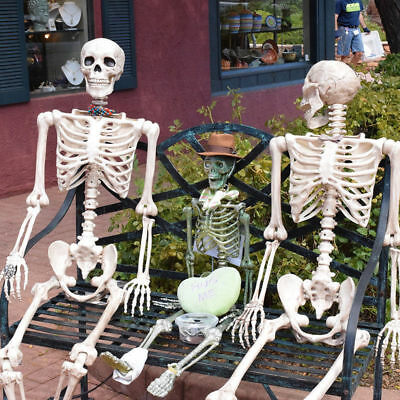 $49.98 • Buy 3/5.6FT Halloween Poseable Life Size Human Skeleton Halloween Decor Party Prop