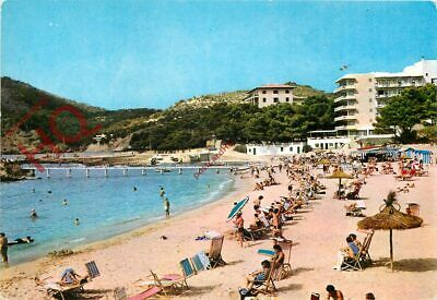 Picture Postcard:-Mallorca, Camp De Mar-Andraitx • 1.99£