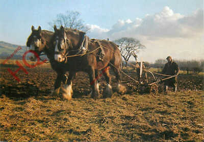 Picture Postcard:;Traditional Ploughing, Britain's Countriside [Salmon] • 3.49£