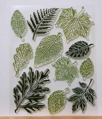 Large Leaf & Leaves Clear Stamp Set - 11 Different Stamps - BNIP - FREE P & P • 4.99£